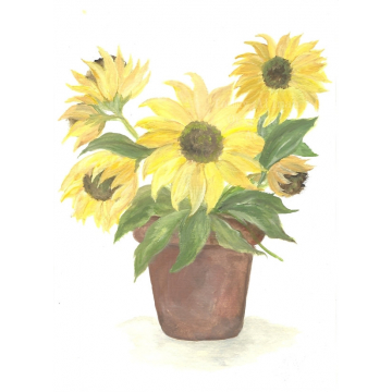 Sunflower Watercolor,
