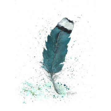 Turquoise Feather Watercolor