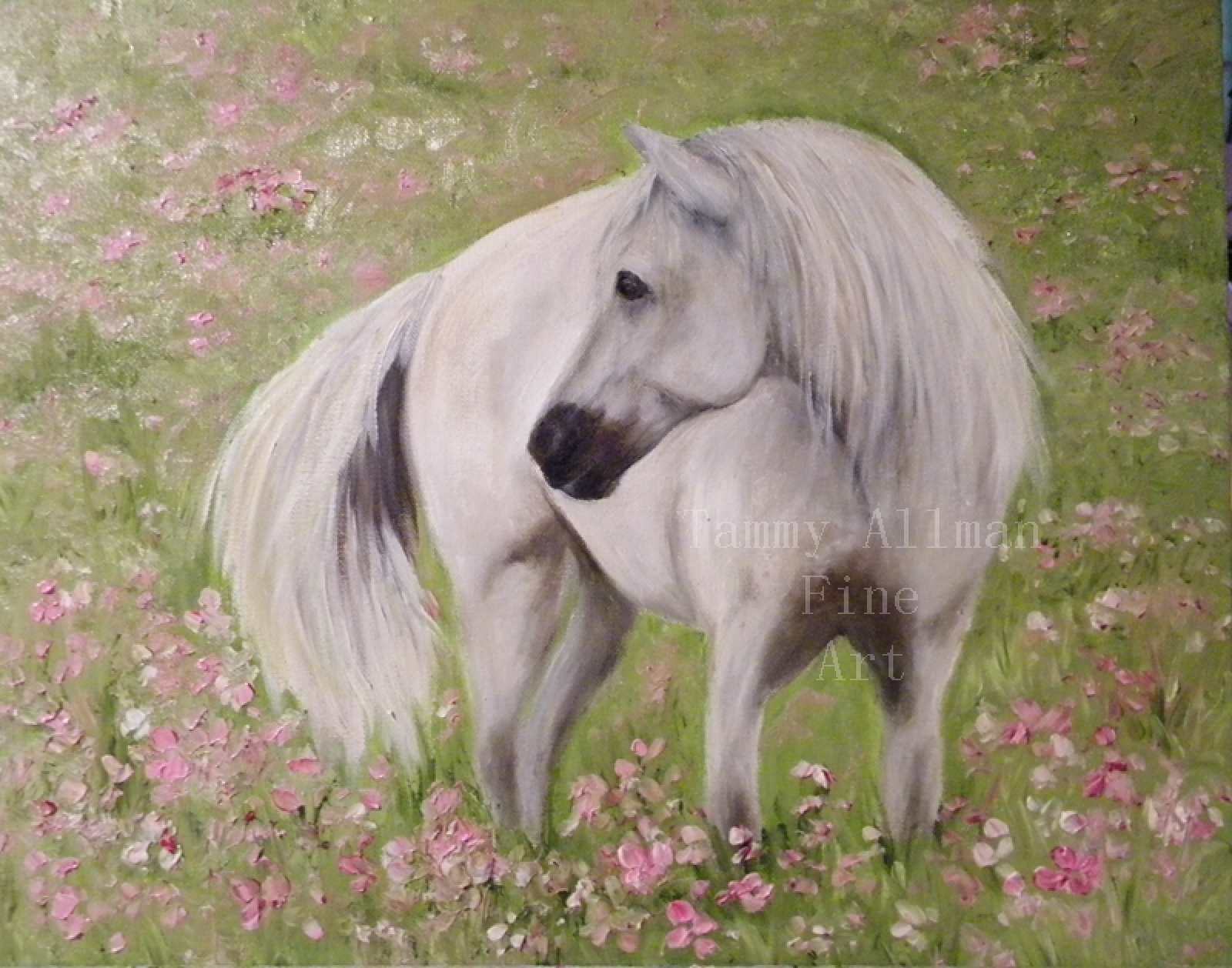Beautiful White Horse Painting Original Oil Horse Painting Kenzie S Cottage