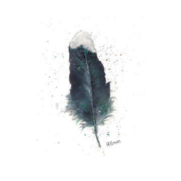 Watercolor Original, Black and Turquoise , Feather Watercolor, Watercolor Feather Painting, Single Feather Sudy,
