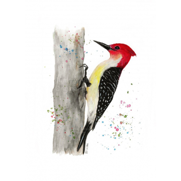 "Red Headed Woodpecker Gouache and Watercolor Print, Woodpecker Series ""Red Breasted Woodpecker"""